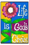 Life is God's Choice 6x9 Window Clings