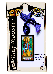 Saint Dymphna Basic Bag Booster