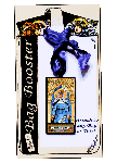 Saint Hildegard of Bingen  Basic Bag Booster