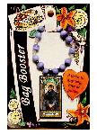 Saint Issac Jogues Bag Booster