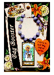 Saint Veronica Bag Booster