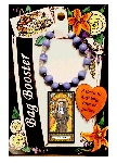 Saint Clare Bag Booster